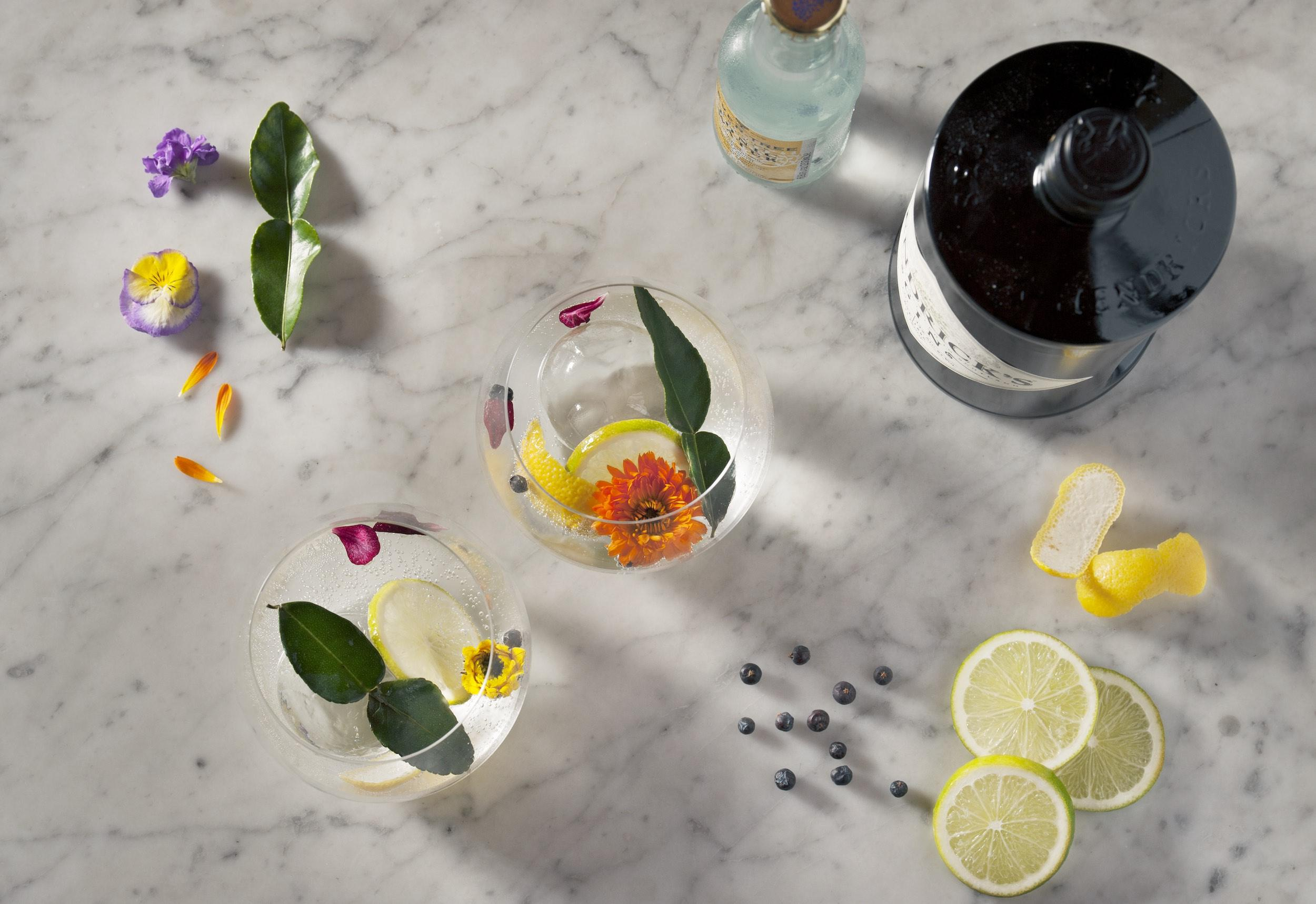 citrus, flowers and ingredients for a gin and tonic