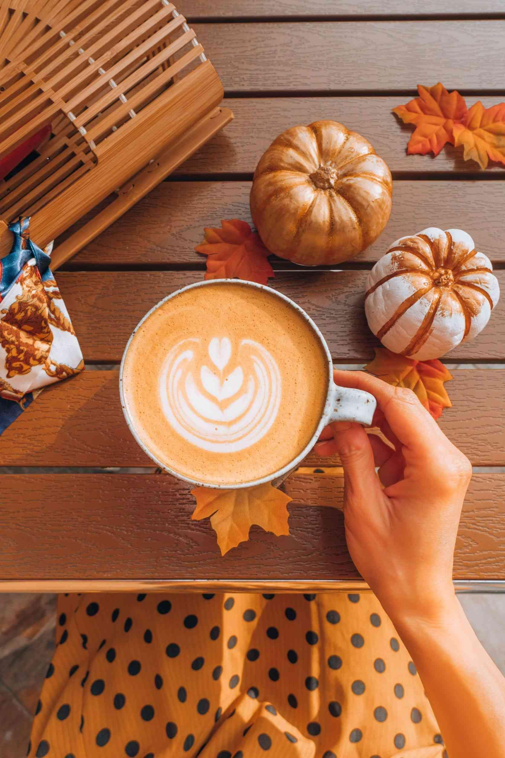 Latte surrounded by pumpkins